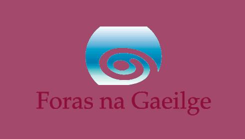 Seisiún Plé ar Treo Straitéiseach d'Fhoras na Gaeilge 2020-2025