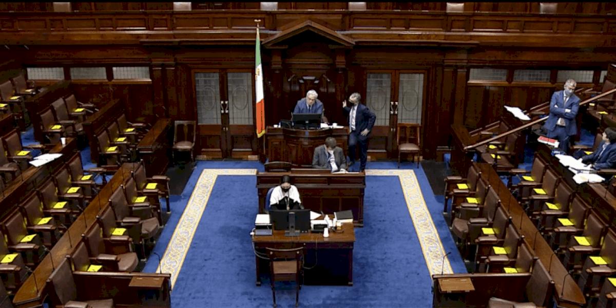 Ceartúsáid ainmneacha agus soláthar foirmeacha stáit i nGaeilge le plé sa Dáil